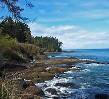 WASHINGTON SHORELINE ~ USA by Lynn Bawden