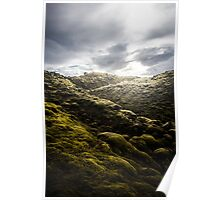 Moss Covered Lava Design Poster