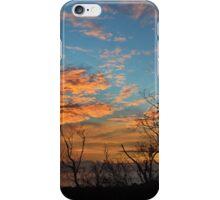 Lorikeet Sunrise iPhone Case/Skin