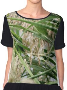 Soft Green Reeds Chiffon Top