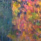 Autumn's tears by MarianBendeth