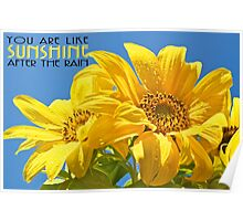 Sunshine After The Rain, you are  Poster
