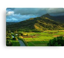 Hanalei Valley Taro Fields Canvas Print