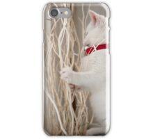 Kitten (Odin) with Twigs  iPhone Case/Skin