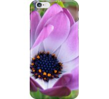 Flower Rejoicing iPhone Case/Skin