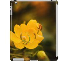 Natures colours 001 iPad Case/Skin