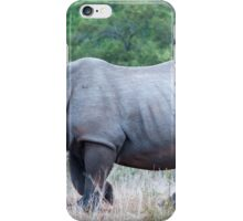 Rhino and friend iPhone Case/Skin