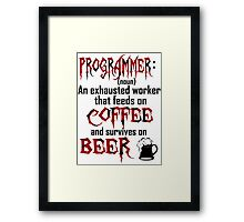 Programmer. Framed Print