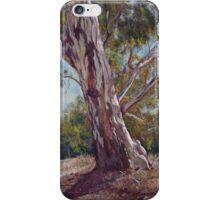 'Roadside Sentinel' iPhone Case/Skin