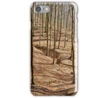 Landscape with beech forest on springtime iPhone Case/Skin