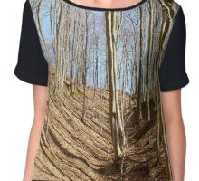 Landscape with beech forest on springtime Chiffon Top