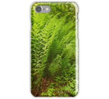 Ferns on the mountain forest iPhone Case/Skin