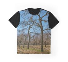 Very tall plum trees in an orchard Graphic T-Shirt