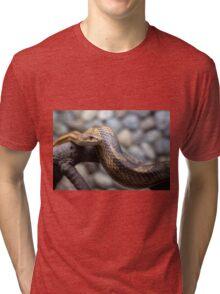 snake on the branch Tri-blend T-Shirt