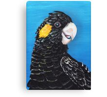 Black Cockatoo Canvas Print
