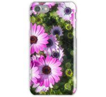 pink flowers chrysanthemum iPhone Case/Skin