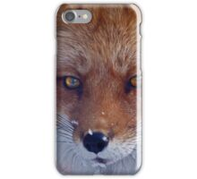 Snow fun in and around Montreal iPhone Case/Skin