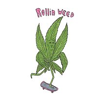 rollin weed Photographic Print