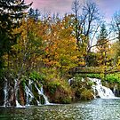 Plitvice Waterfall and lake. by Colin Metcalf