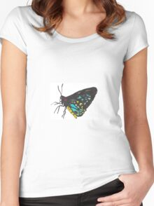 Male Cairns Birdwing Butterfly Design Women's Fitted Scoop T-Shirt