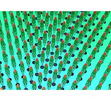 what the hey, it's green matrix day Photographic Print