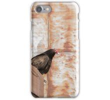 Turkey Vulture 2016-1 iPhone Case/Skin
