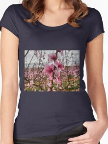 Peach Blossoms Women's Fitted Scoop T-Shirt