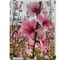 Peach Blossoms iPad Case/Skin