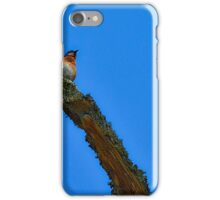 Blue Bird against Blue Sky iPhone Case/Skin