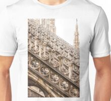 spectacular rows of buttresses Unisex T-Shirt