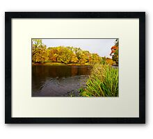 lake in the city park in autumn Framed Print