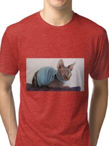 Sphynx cat green eyes Tri-blend T-Shirt
