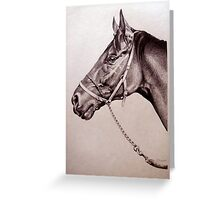 Sir Alfred - Racehorse Greeting Card