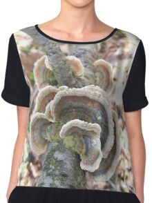 Natures Rosettes Chiffon Top