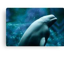 Beautiful Beluga Whale Canvas Print