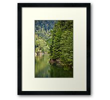 Lake and pine trees Framed Print