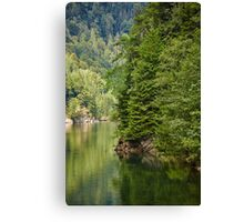 Lake and pine trees Canvas Print