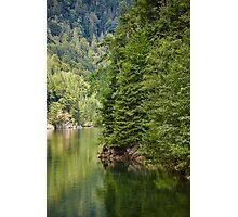 Lake and pine trees Photographic Print
