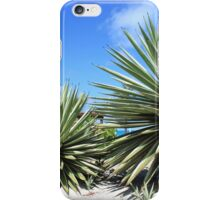 Aloe Vera plant at the beach iPhone Case/Skin
