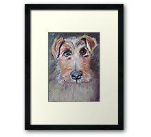 Rescue dog, France IV Framed Print