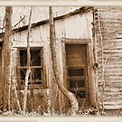 """Tennessee Mountain Home""... prints and products by © Bob Hall"