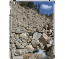 into the flood canyon iPad Case/Skin