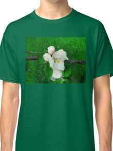apple blooming Classic T-Shirt