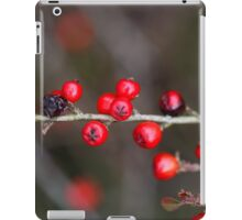 Small red berries on a Cotoneaster bush. iPad Case/Skin