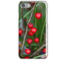 Berries on a Cotoneaster bush iPhone Case/Skin