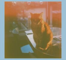 Dreamy Cat - Yashica Medium Format Photograph Baby Tee