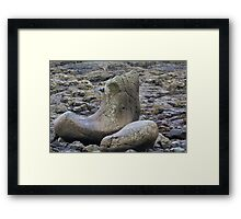 Giants Shoe at the Giants Causeway Framed Print