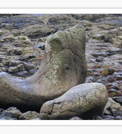 Giants Shoe at the Giants Causeway Sticker