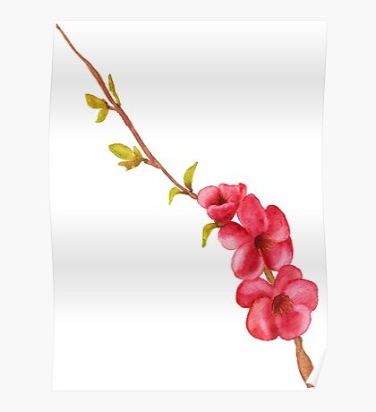 pink flowers and green leaves on a tree branch Poster