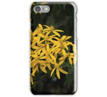 Yellow Flowers Blooming iPhone Case/Skin